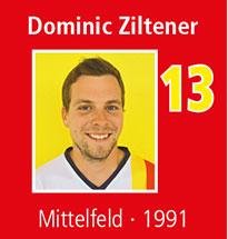 d_ziltener